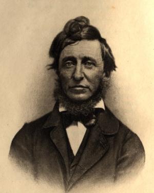 Thoreau2