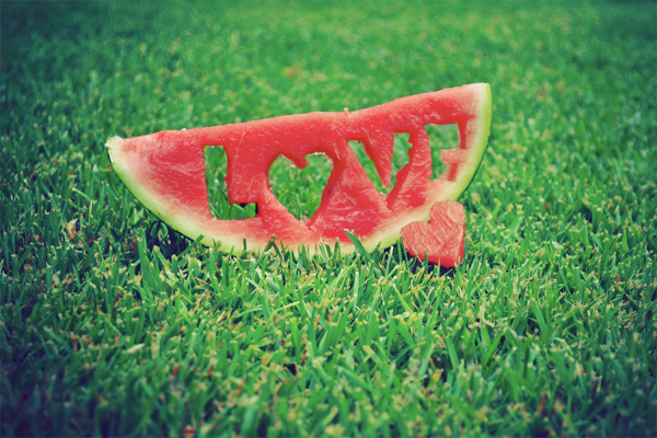 watermelon-love-fruit-fresh-grass-green-red-summer-water-ice-sea-favim-com-445555